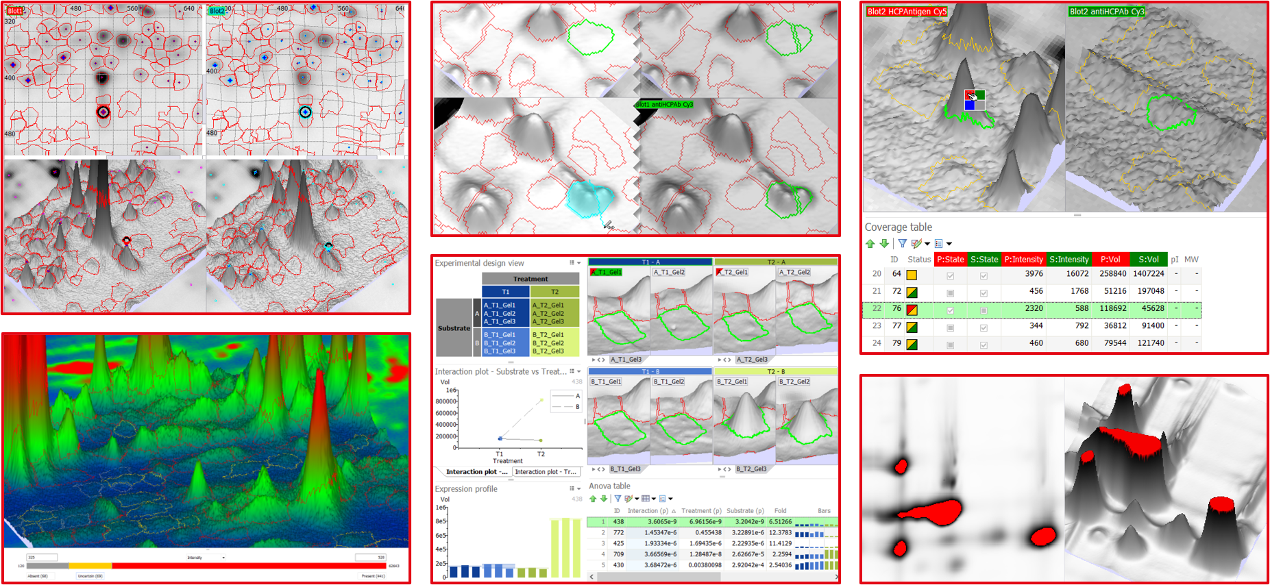 3D view in Melanie 2D gel and blot image analysis software